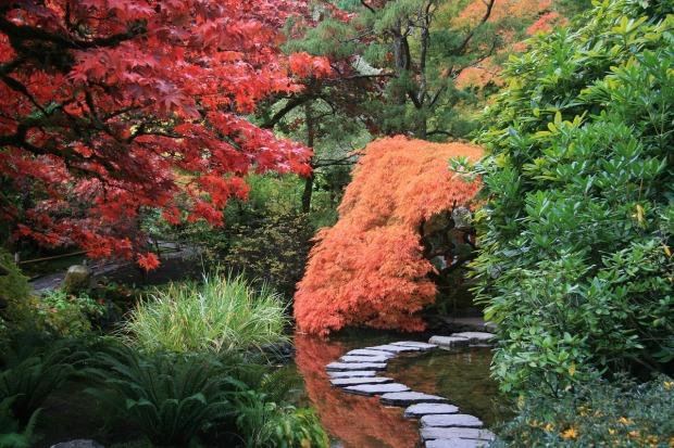 japanese-garden-2898777_1280