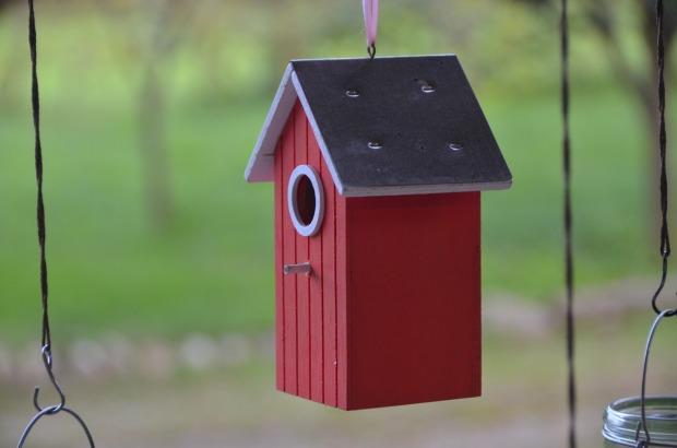 birdhouse-1060939_1280