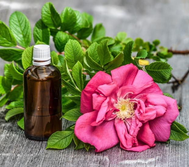 essential-oils-2536405_1280