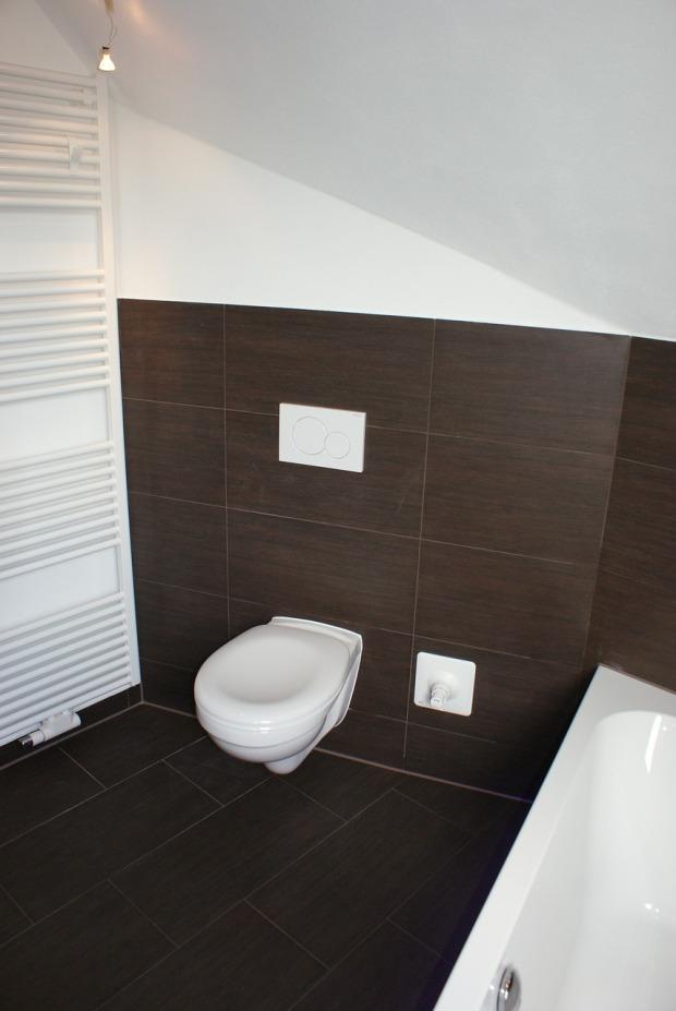 toilet-464903_1280(1)