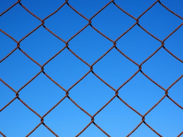 wire-mesh-1117741_1280