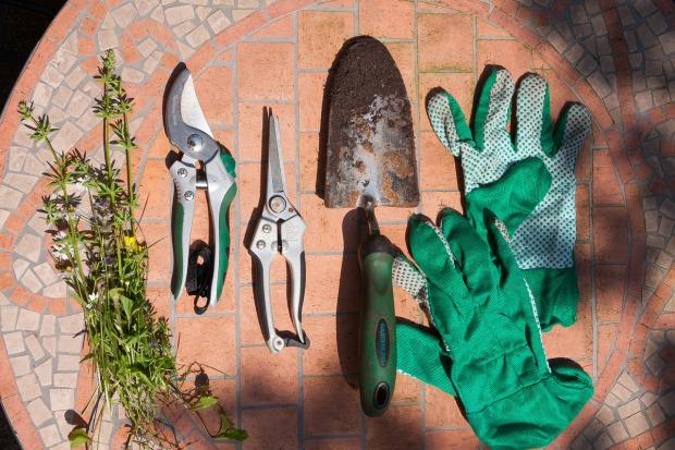 scissors-1424660_1280